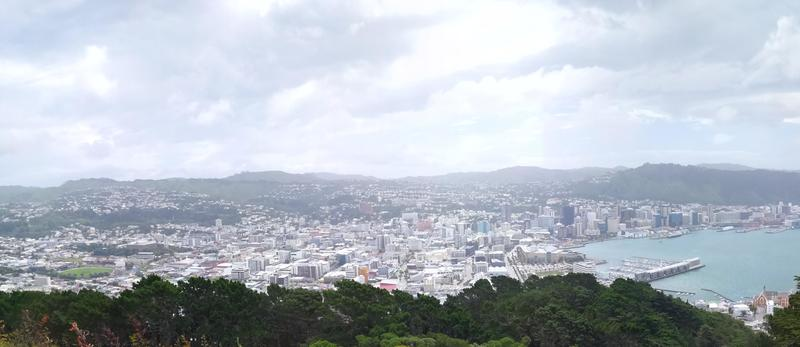 Wellington's city centre, a stark contrast to the surrounding suburbs